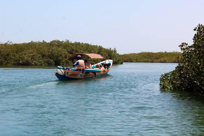 Photo 2 du Propositions de séjours combinés par l'Ecolodge de Palmarin - Séjour nature et excursions dans le d